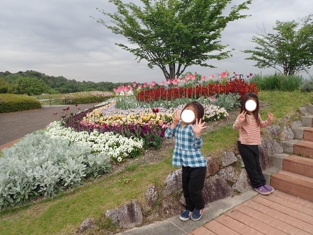f:id:mochikichi-blog:20200613112242j:plain