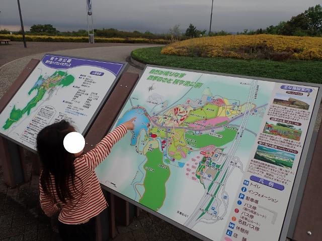 f:id:mochikichi-blog:20200613112250j:plain