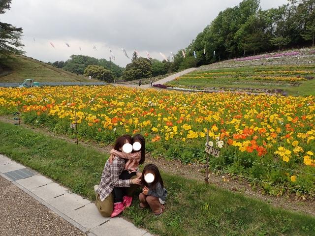 f:id:mochikichi-blog:20200613112422j:plain