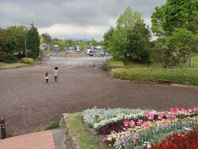 f:id:mochikichi-blog:20200613112438j:plain