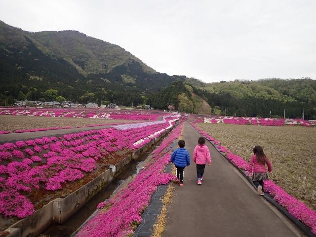 f:id:mochikichi-blog:20200613143401j:plain