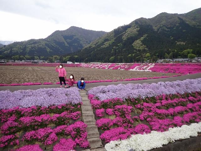 f:id:mochikichi-blog:20200613143419j:plain