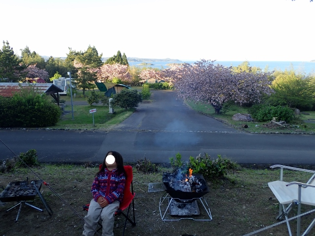 f:id:mochikichi-blog:20200613152732j:plain