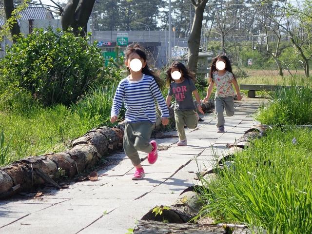 f:id:mochikichi-blog:20200613155119j:plain