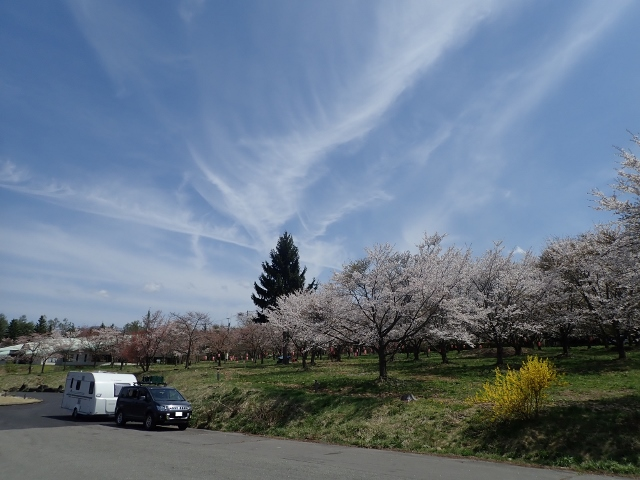 f:id:mochikichi-blog:20200613162128j:plain