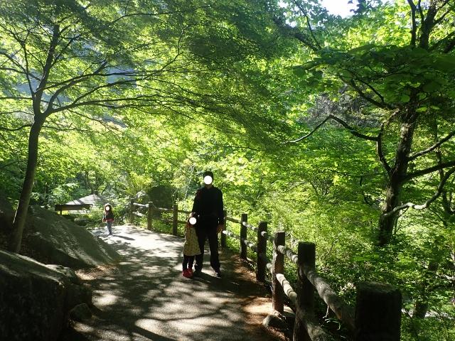 f:id:mochikichi-blog:20200613165449j:plain