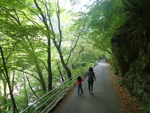 f:id:mochikichi-blog:20200613165510j:plain