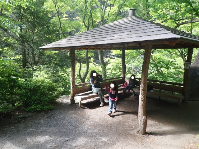 f:id:mochikichi-blog:20200613165538j:plain