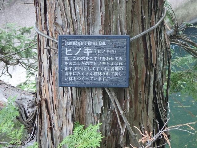 f:id:mochikichi-blog:20200613165545j:plain
