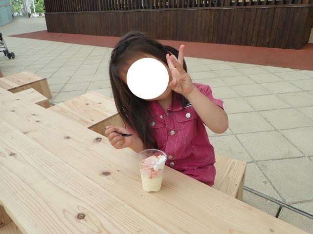 f:id:mochikichi-blog:20200613170822j:plain