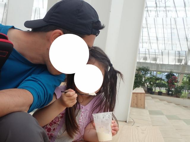 f:id:mochikichi-blog:20200613170836j:plain