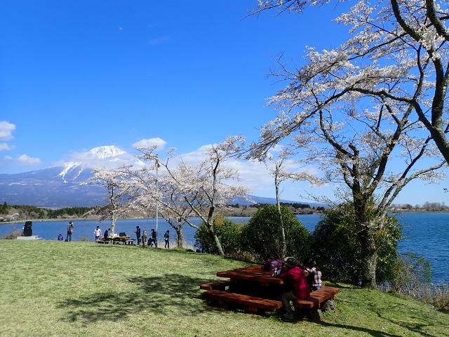 f:id:mochikichi-blog:20200613173957j:plain