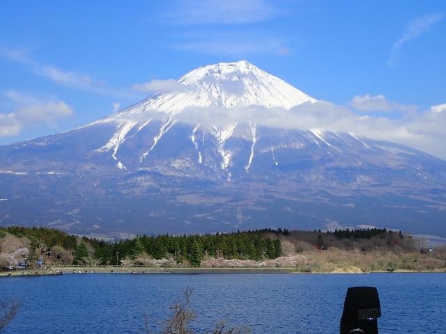 f:id:mochikichi-blog:20200613174019j:plain