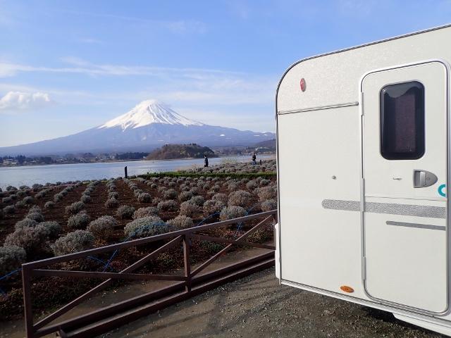 f:id:mochikichi-blog:20200613175300j:plain