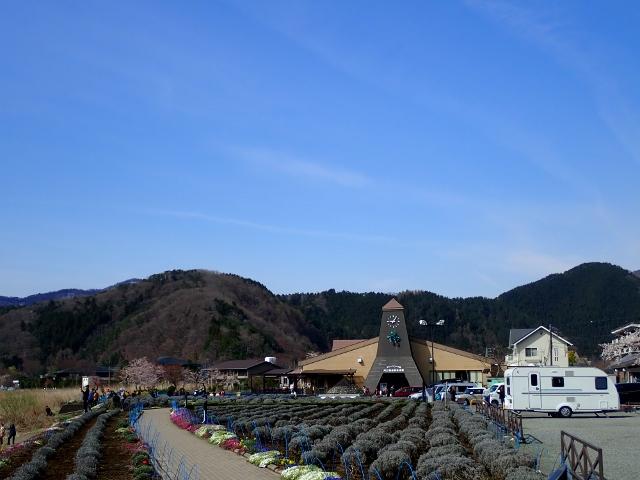f:id:mochikichi-blog:20200613175323j:plain