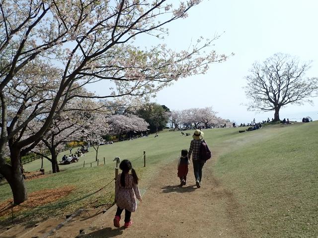f:id:mochikichi-blog:20200613181245j:plain