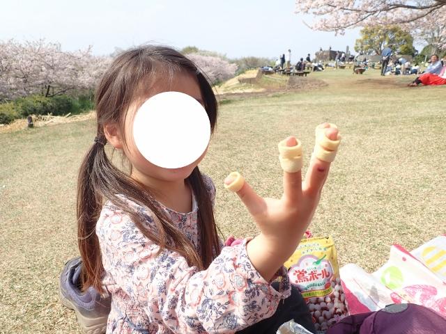 f:id:mochikichi-blog:20200613181252j:plain