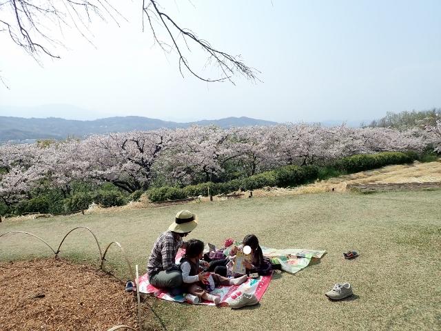 f:id:mochikichi-blog:20200613181259j:plain