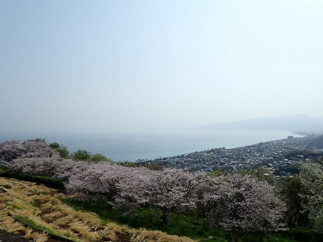 f:id:mochikichi-blog:20200613181313j:plain