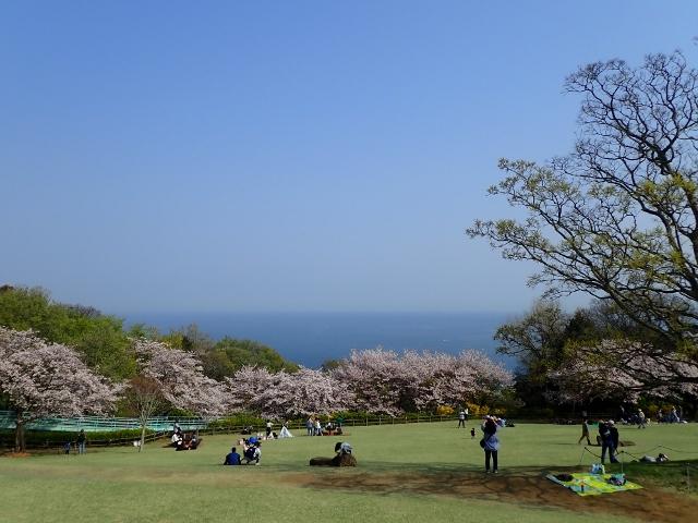 f:id:mochikichi-blog:20200613181318j:plain