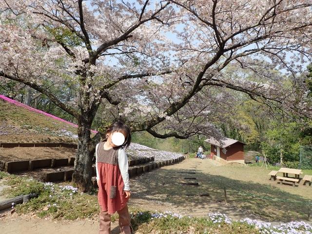 f:id:mochikichi-blog:20200613181429j:plain