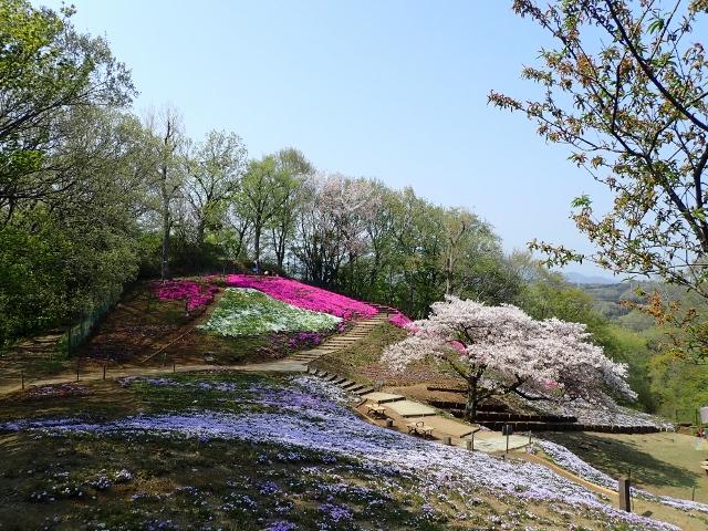 f:id:mochikichi-blog:20200613181435j:plain
