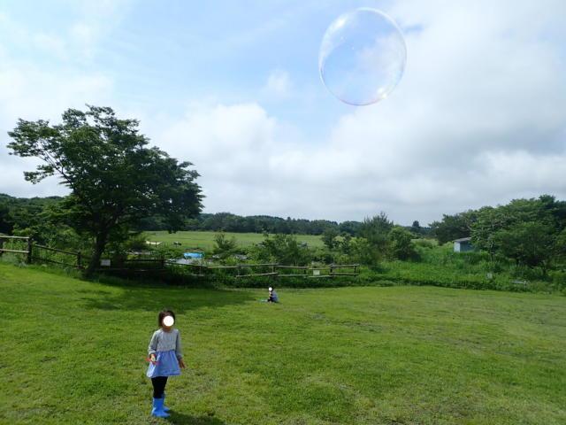 f:id:mochikichi-blog:20200623210200j:plain