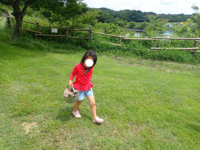f:id:mochikichi-blog:20200623210226j:plain