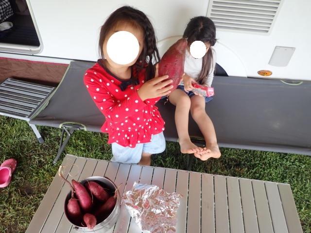 f:id:mochikichi-blog:20200623213259j:plain