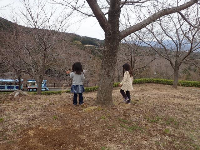 f:id:mochikichi-blog:20200625093217j:plain