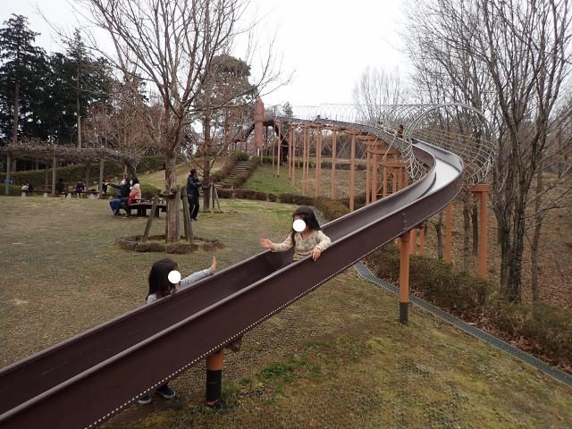 f:id:mochikichi-blog:20200625093235j:plain