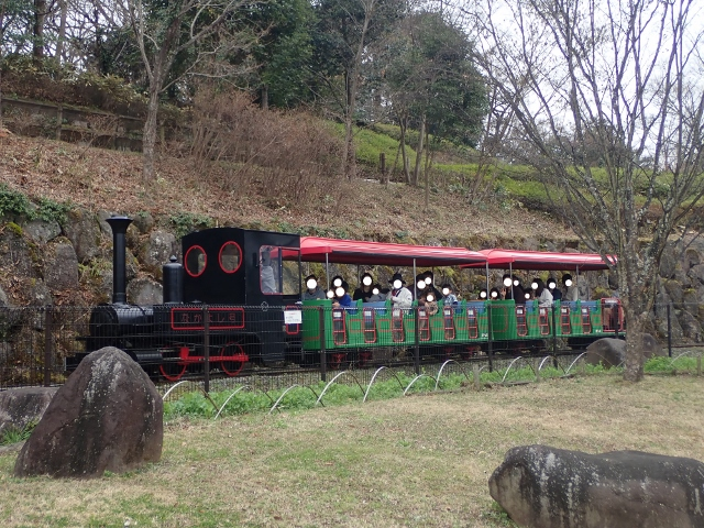 f:id:mochikichi-blog:20200625093255j:plain