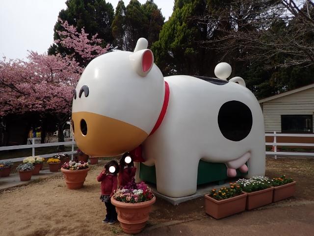 f:id:mochikichi-blog:20200625094252j:plain