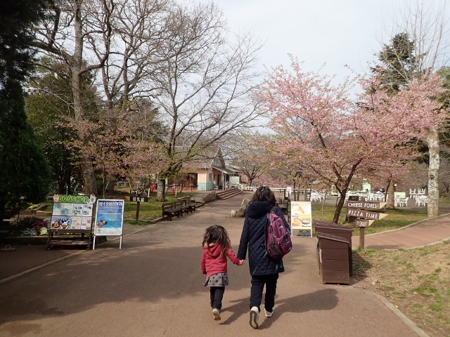 f:id:mochikichi-blog:20200625094302j:plain