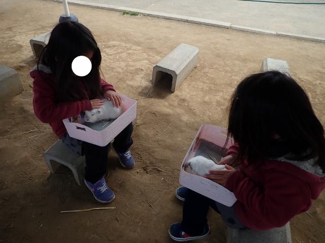 f:id:mochikichi-blog:20200625094424j:plain