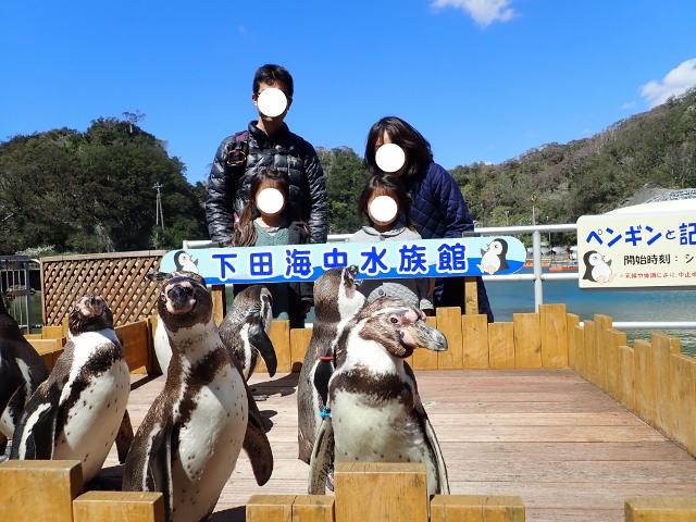 f:id:mochikichi-blog:20200625101719j:plain