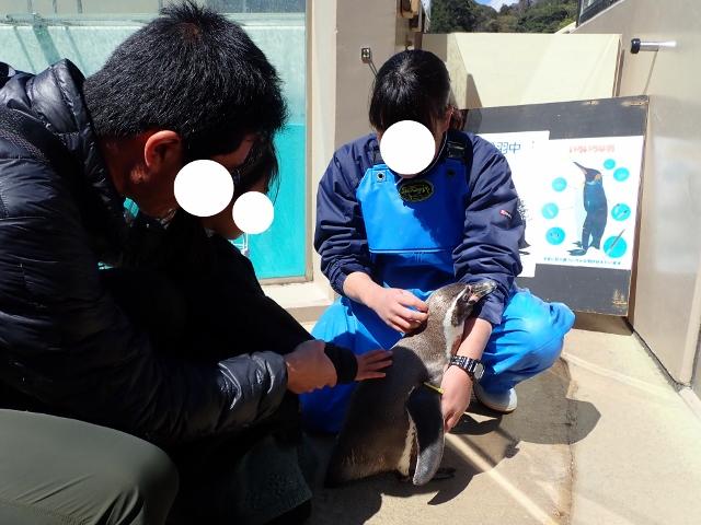f:id:mochikichi-blog:20200625101724j:plain