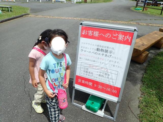 f:id:mochikichi-blog:20200628141439j:plain