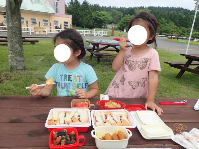 f:id:mochikichi-blog:20200628141458j:plain