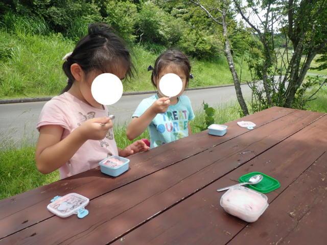 f:id:mochikichi-blog:20200628141519j:plain