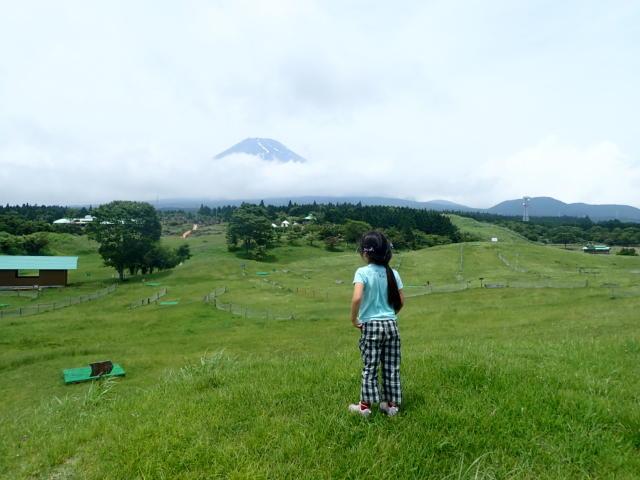 f:id:mochikichi-blog:20200628141528j:plain
