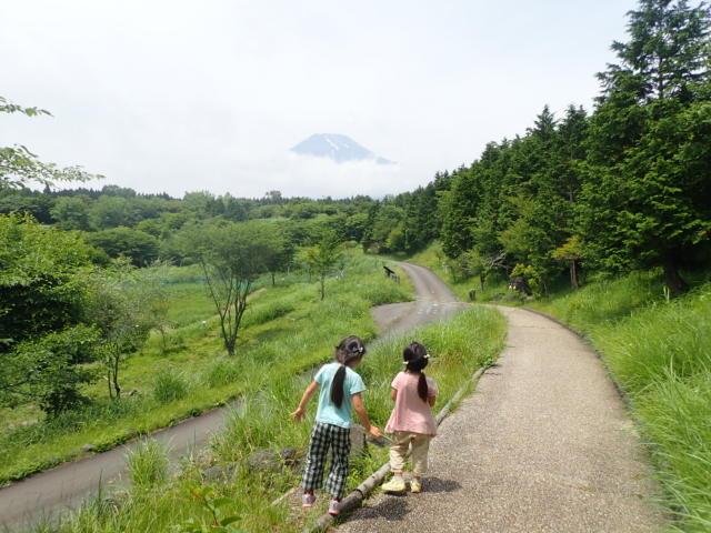 f:id:mochikichi-blog:20200628141532j:plain