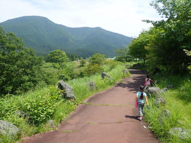 f:id:mochikichi-blog:20200628141554j:plain
