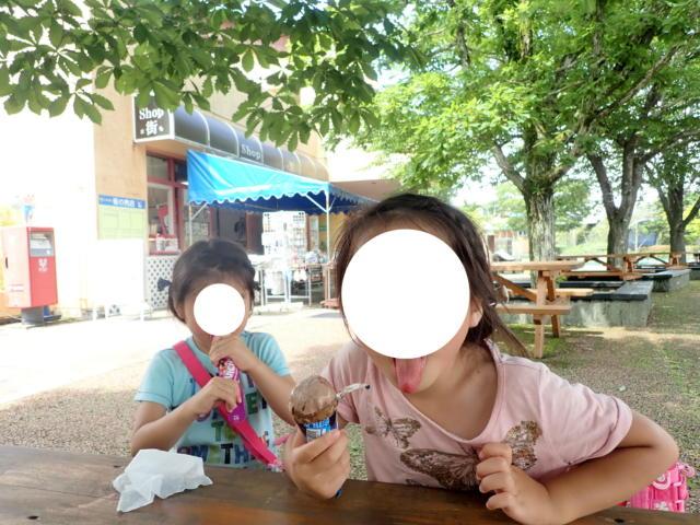 f:id:mochikichi-blog:20200628141611j:plain