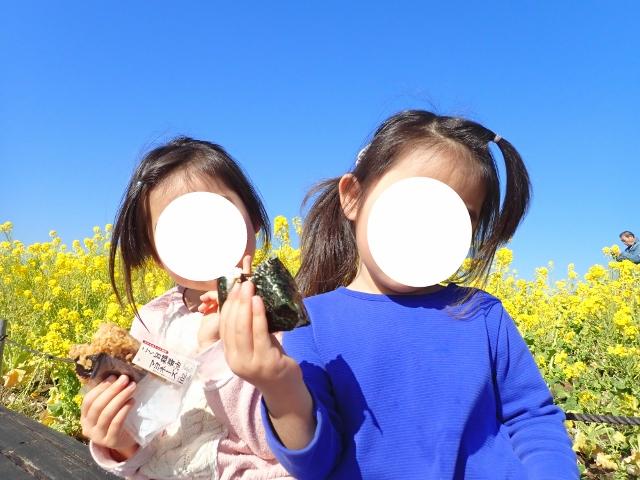 f:id:mochikichi-blog:20200701101627j:plain