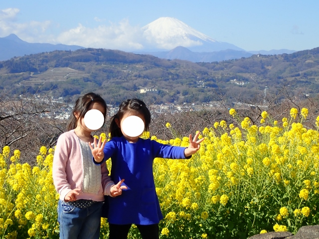 f:id:mochikichi-blog:20200701101648j:plain