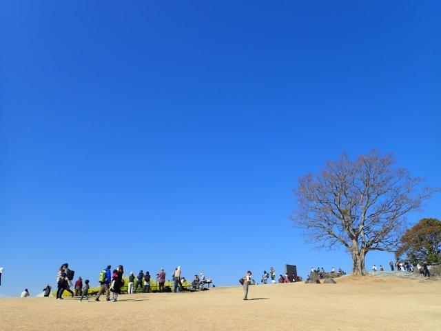 f:id:mochikichi-blog:20200701101653j:plain