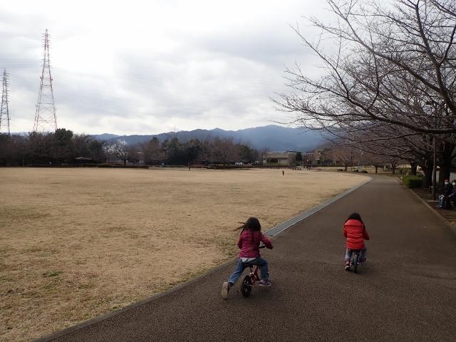 f:id:mochikichi-blog:20200701102910j:plain