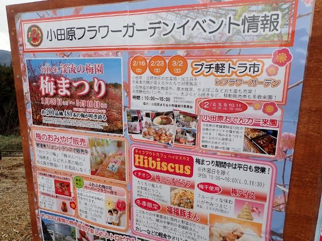f:id:mochikichi-blog:20200701102920j:plain