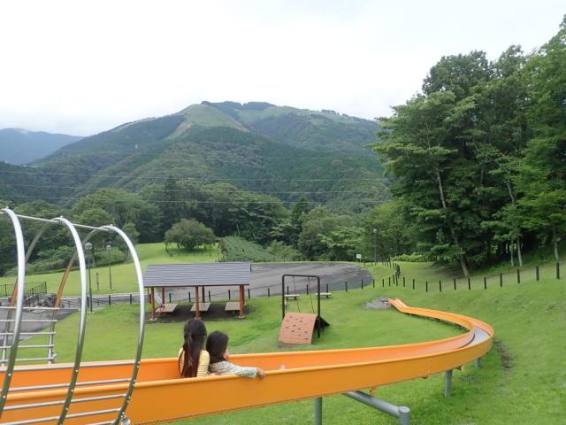 f:id:mochikichi-blog:20200705204110j:plain